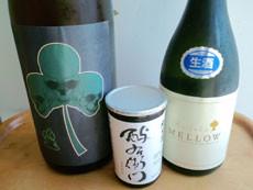 シャムロック(注*日本酒)