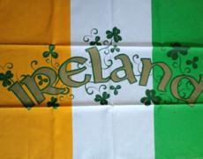 明日はラグビーのアイルランド対日本戦